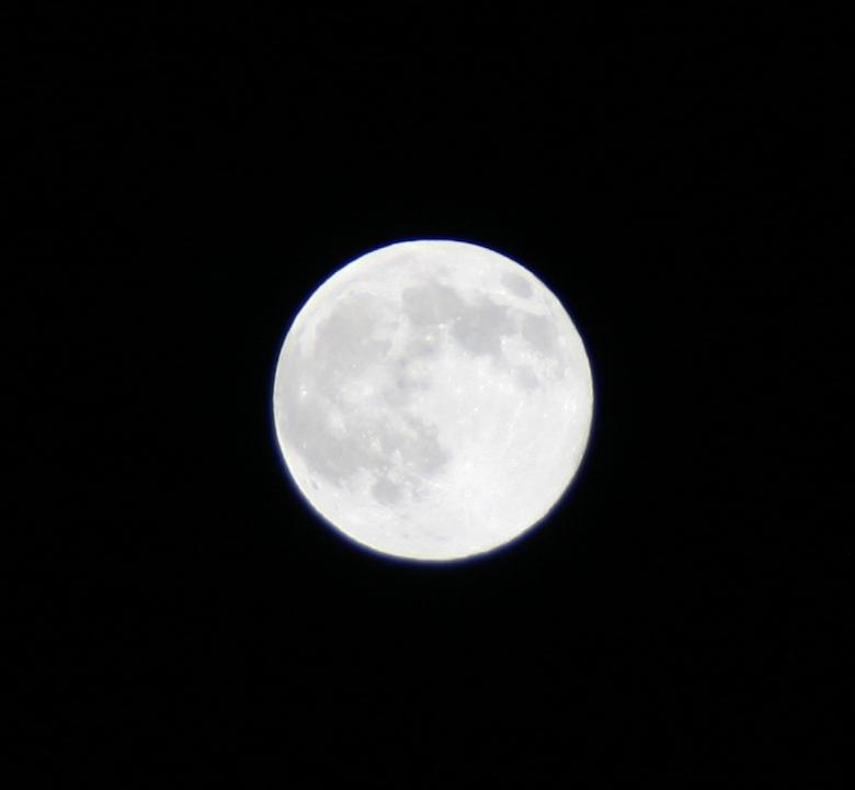 今夜は満月~♪